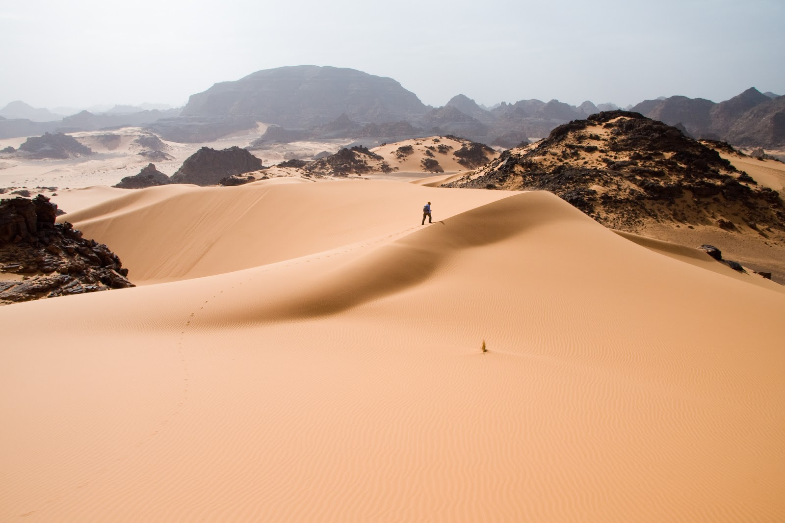 Things To Know Before Going To The Sahara Desert Tour
