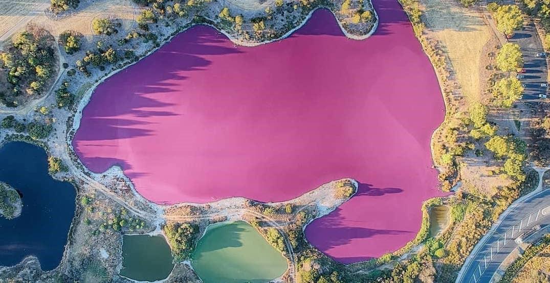Pink Lake Of Australia