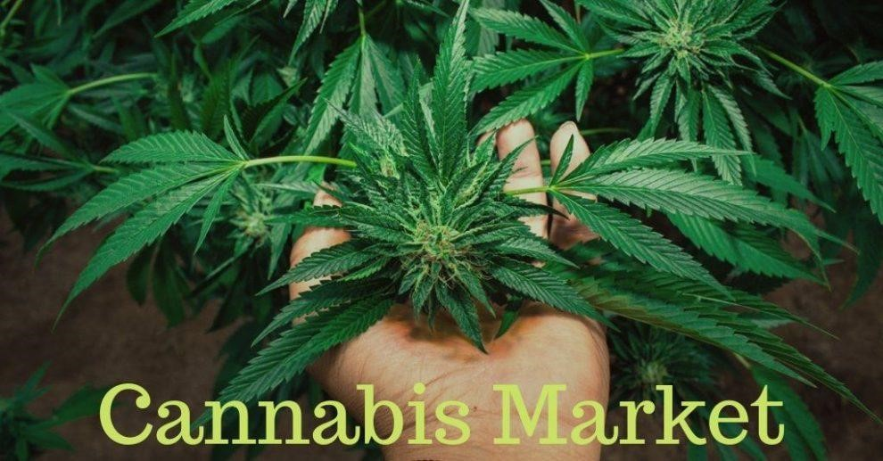 Cannabis Industry Trends And Business Plans