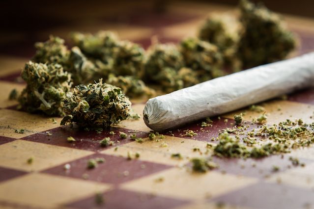 Understand Everything About Hemp Buds For Smoking